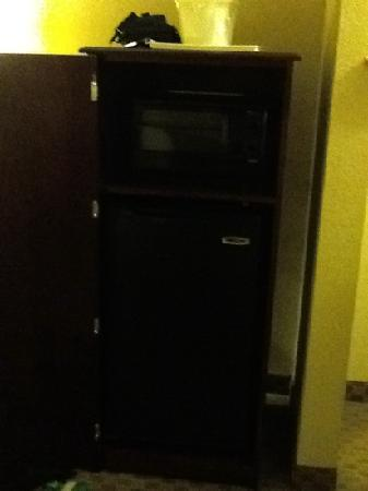 Comfort Suites Kodak: you cant see it but that cabinet convienently has a microwave and fridge inside!