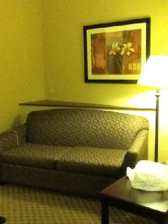 Comfort Suites Kodak: a sleeper couch with a nice little slanted wall
