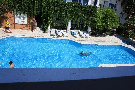 Hotel Blue: primo piano piscina
