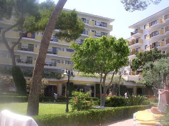 Iberostar Alcudia Park: gardens around pool
