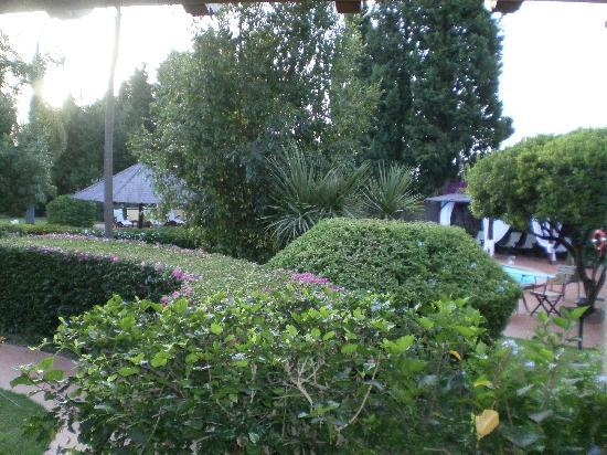 Nora Club Hotel: Il giardino che si vedeva dalla mia camera