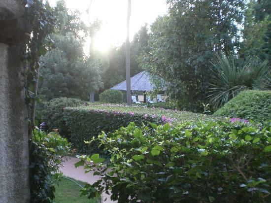 Nora Club Hotel: Il giardino, come visibile è molto curato