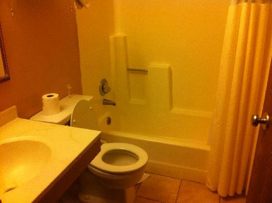 Travelodge Colorado Springs: Bathroom