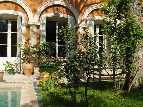Ma Chambre d'Hotes a Montpellier: le jardin au printemps