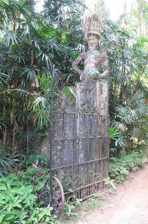 Beruwala, Sri Lanka: Garden