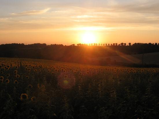 Chambre D'hotes La Croix D'helene : Pampelonne coucher de soleil