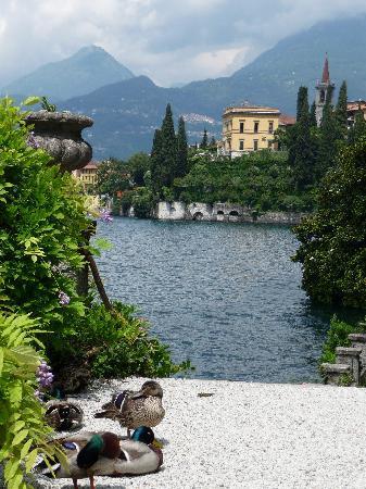 Villa Monastero: View towards Varenna from the Gardens