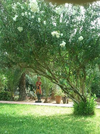 Dar Ayniwen Villa Hotel: Jardins magnifiques