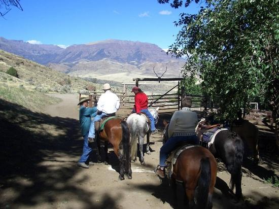 Rimrock Ranch: Getting ready to ride!!  YaHoo