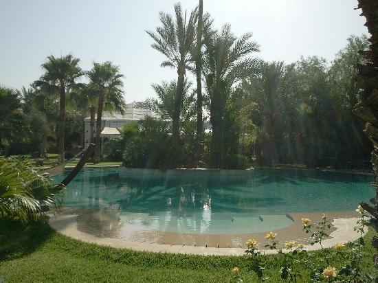 Lodge K Hotel & Spa : Piscine agréable et transats confortables