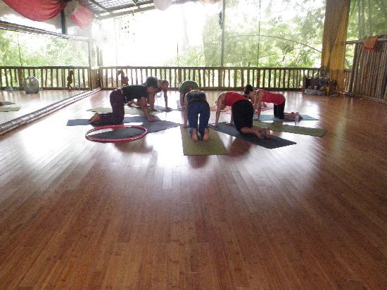 Danyasa Eco-Retreat - Bamboo Yoga Play Studio: bamboo flying yog class