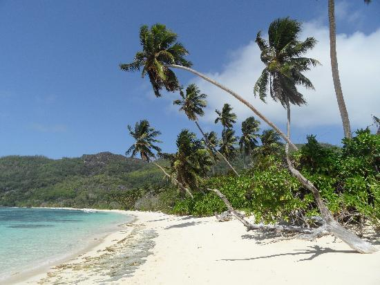 Anse Forbans, Seychelles: spiaggia dell'Hotel