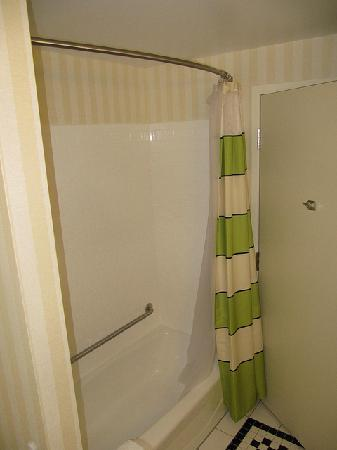Fairfield Inn & Suites Winnipeg: Bathroom