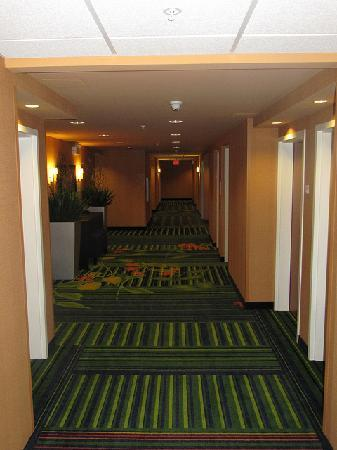 Fairfield Inn & Suites Winnipeg: Hallway