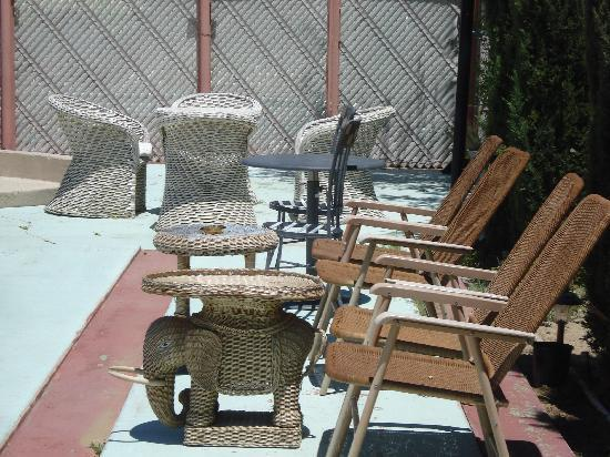 Safari Motor Inn - Joshua Tree: MORNING COFFEE PLACE FOR MANY OUT DOOR LOVERS