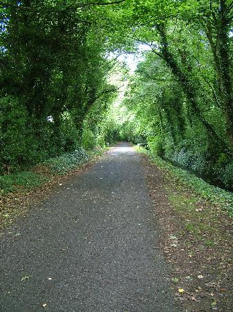 Camac Valley Tourist Caravan and Camping Park: One of the walks