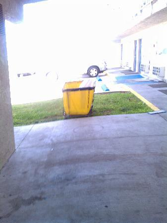 Motel 6 Corpus Christi - N. Padre Island: This was right by the pool...nice