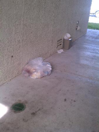 Motel 6 Corpus Christi - N. Padre Island: trash laying around