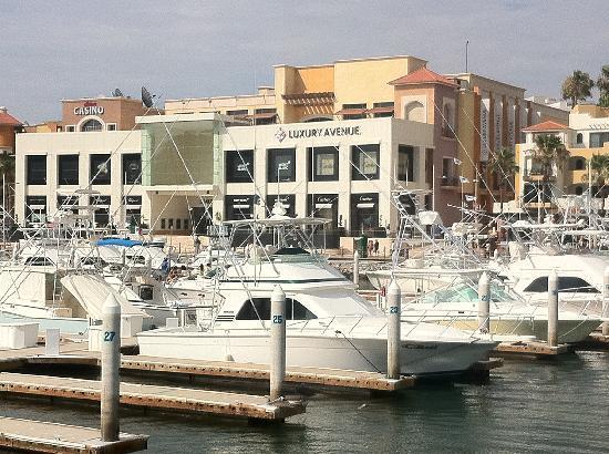 Marina Cabo San Lucas: View Returning to Marina Dock