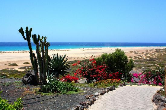 Iberostar Fuerteventura Palace : view from one of the beach exits