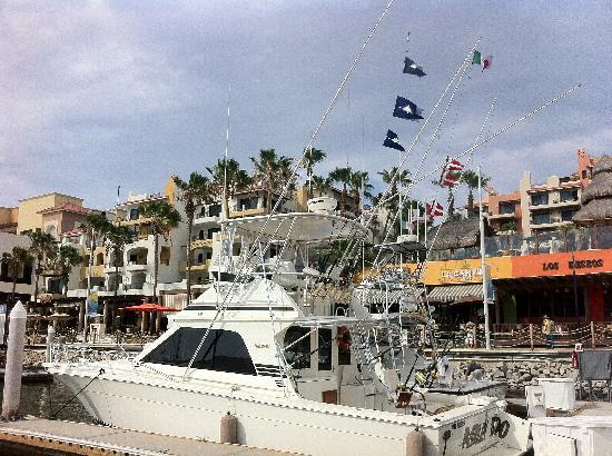 Rancho Tours: View of Marlin Flags, boat, and Marina