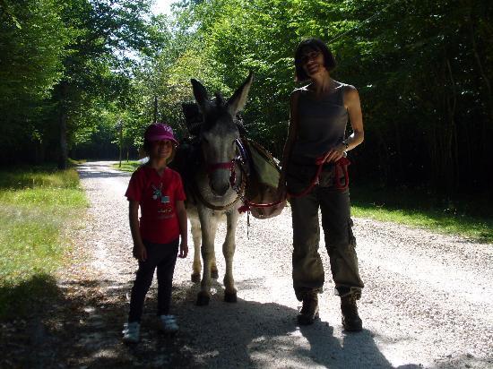 Les ânes de Madame: Notre première journée avec Justine