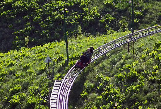 Almaty, Kazakstan: The fastcoaster - the rider controls the speed with a hand brake at the side of the seat
