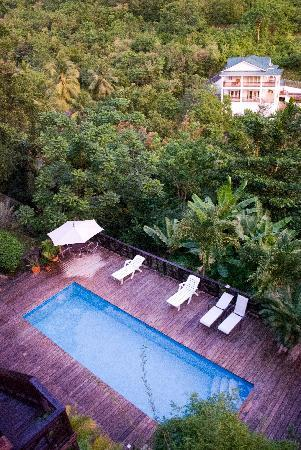 Villa Pomme d'Amour : la piscine