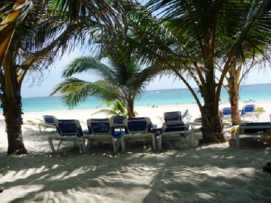Occidental Caribe: Plage