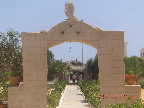 Playa Sidi Mehrez, Tunezja: djerba sun