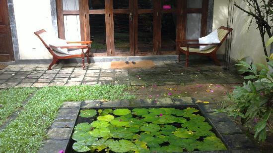 The River House: The pond Infront of our Room