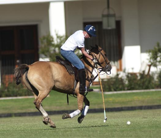 El Metejon Campo Privado: Aspiring polo player