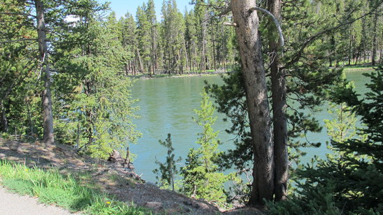 Photo of Grant Village Campground Yellowstone National Park