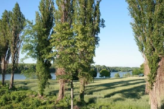 Rosenhotel: Blick von der Terrasse auf die Donau