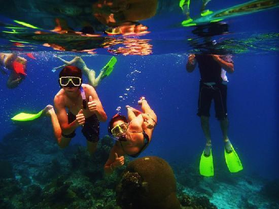 Castaway Island Fiji: Snorkling off Mondriki Island