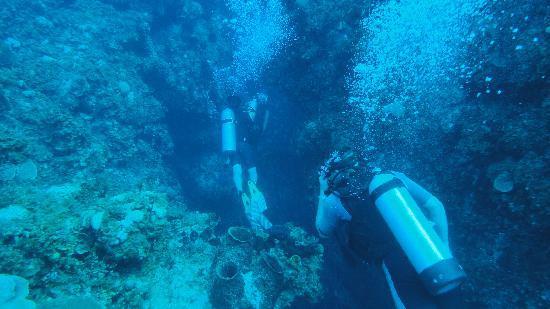 Club Med Columbus Isle: Plongée dans les tunnels