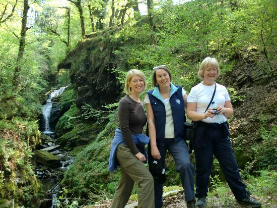 Tal-Y-Bont Country House B&B: Lovely wooded gorge a short walk from the house.