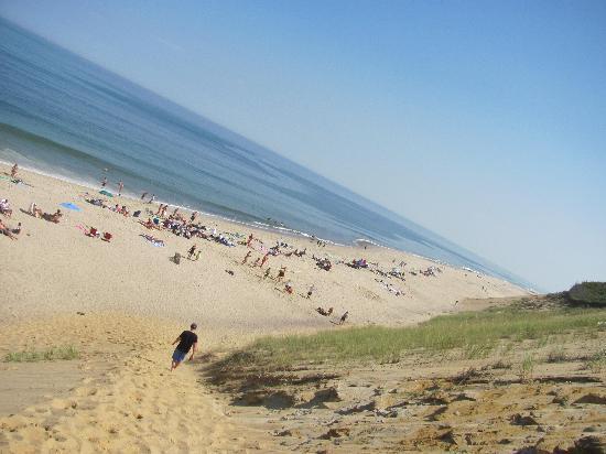 Wellfleet Beachcomber Going Down