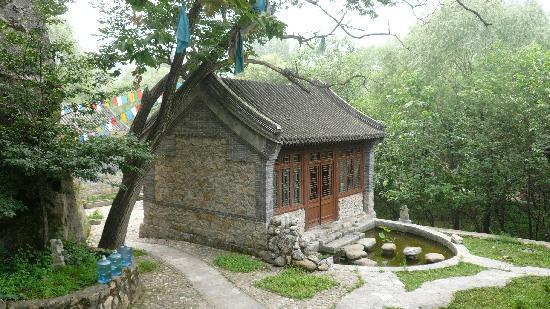 Red Capital Ranch (Shambhala at the Great Wall): Tea room