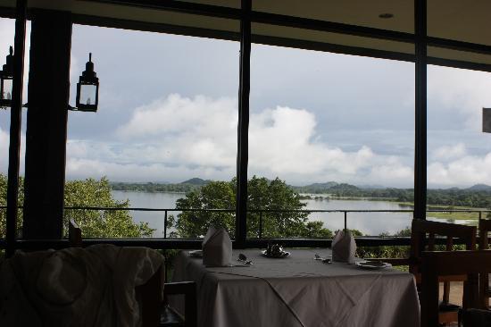 Heritance Kandalama : vistas desde el restaurante