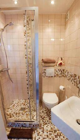 Bed & Breakfast Bouchardon: small private little bathroom with shower
