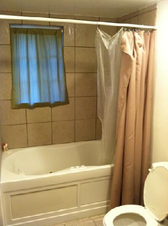 Antlers Inn: bathroom
