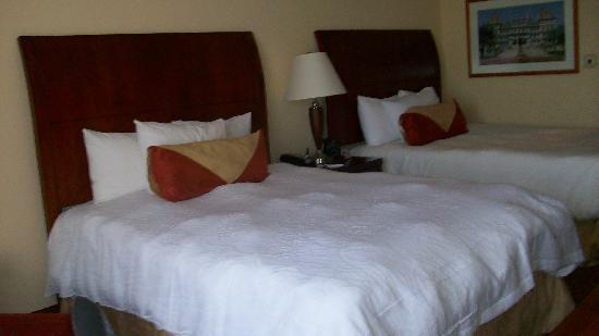 Hilton Garden Inn Albany Medical Center : Room 505 2