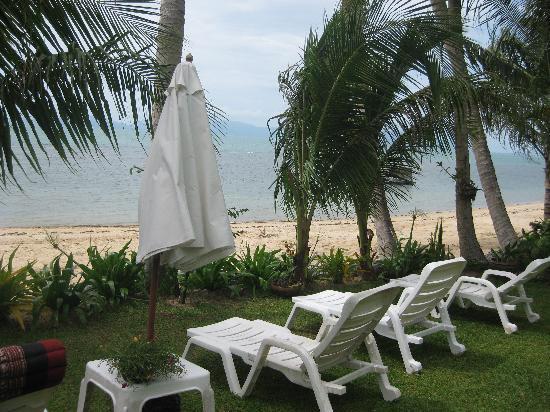 Laguna Villas : Gartenblick zum Meer