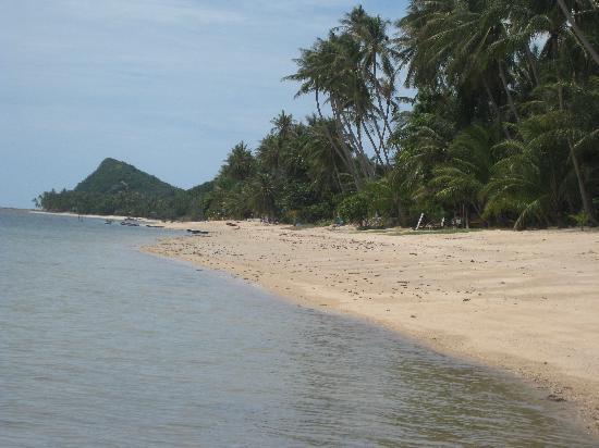 Laguna Villas : Strand
