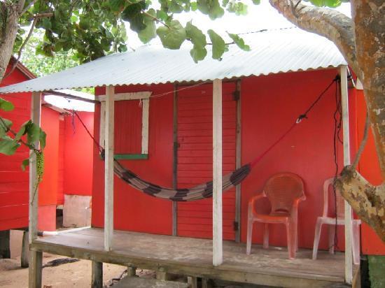 Carlito's Sunrise Paradise: My house