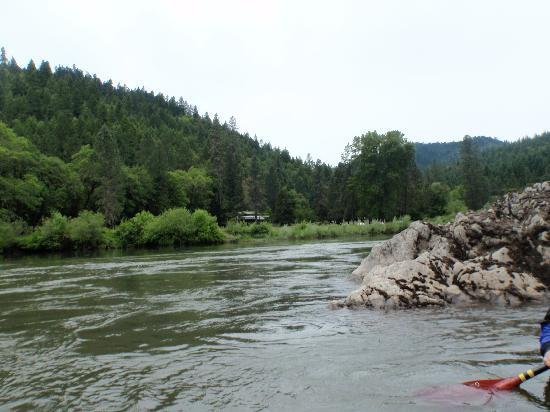 Morrison's Rogue River Lodge: Morrison's from the river