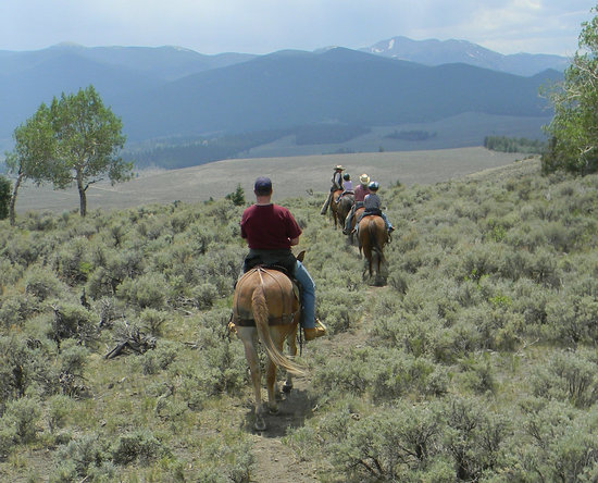 Granite Mountain Outfitters: Childrens' First Trail Ride