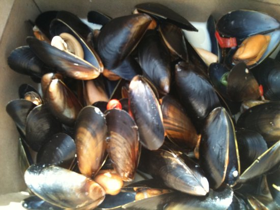 The Lobster Shack: magnificent mussels