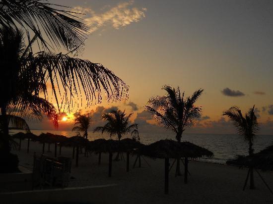 Coral Reef Beach Bar: Coral Beach Early Morning Sunrise